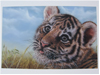 airbrush tigercub